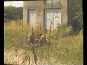 Two chicks filmed by spy cam in nature